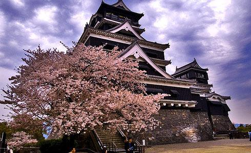 مشاوره ازدواج ژاپن